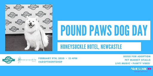 Pound Paws Dog Day at Honeysuckle Hotel