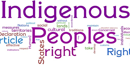 Indigenous Human Rights Training