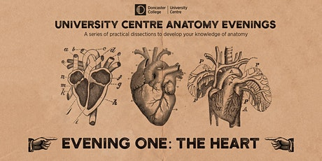 Anatomy Evenings. Evening One: The Heart A tickets