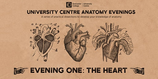 Anatomy Evenings. Evening One: The Heart A