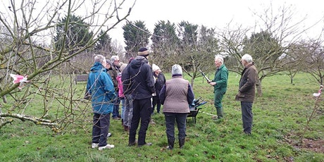 Apple Pruning Session (for JHCL volunteers) tickets