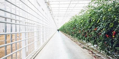 Tuinbouw Energiedag 2020 tickets