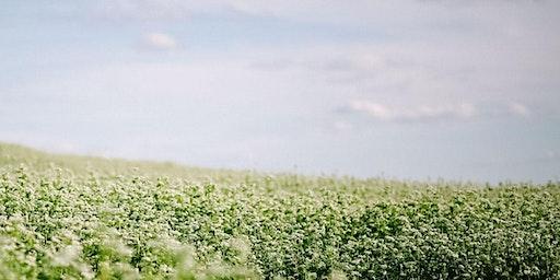 Healthy Soils, Healthy Farms