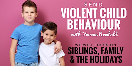 Violent Child Behaviour WEBINAR- Siblings, Family + The Holidays tickets