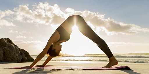 USF Alumni Yoga