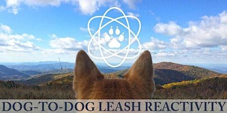 Dog-to-Dog Leash Reactivity Workshop tickets