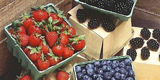 Clay County Small & Tree Fruit Seminar