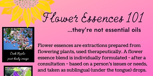 Flower Essences 101