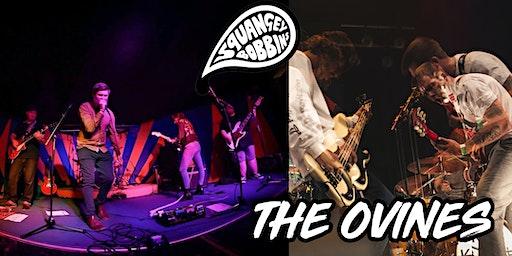 Squangey Bobbins & The Ovines