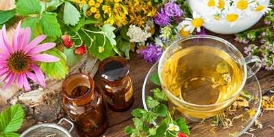 Herbal Remedies for cold and flu