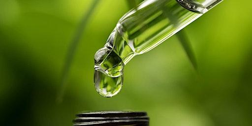 Making a Custom Herbal Protocol for Lyme disease