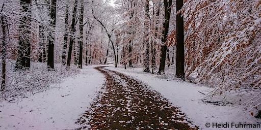 Sunday Mornng Winter Photo Walk with Fine Art Photographer Heidi Fuhrman