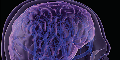 PT Management of the Individual following a Traumatic Brain Injury