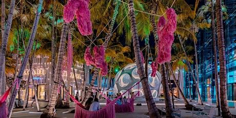 VIP Hidden World of Miami Design District billets