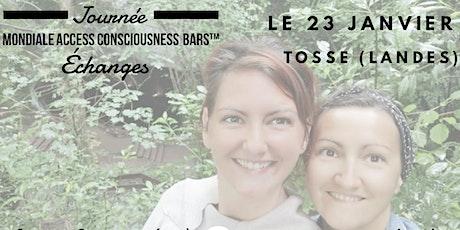 journée d'échange - journée mondiale des Bars d'Access Consciousness billets