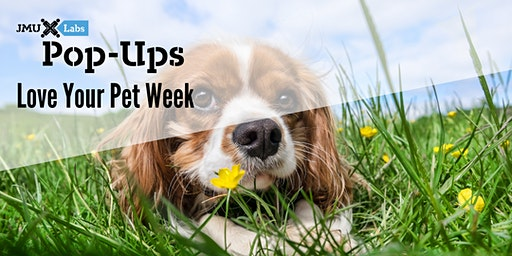 Pop-Up Workshop: Love Your Pet Week