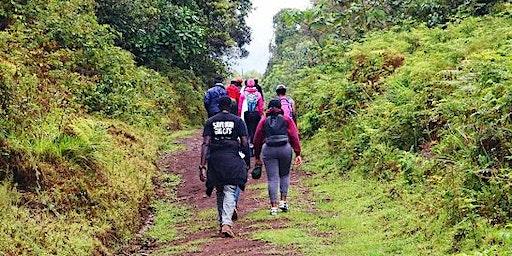 Mt.Kenya 1day Hike through the scenic Kamweti Rout