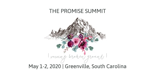 The Promise Summit