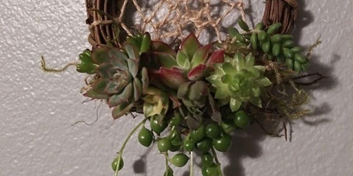 Succulent Dreamcatcher Wreaths