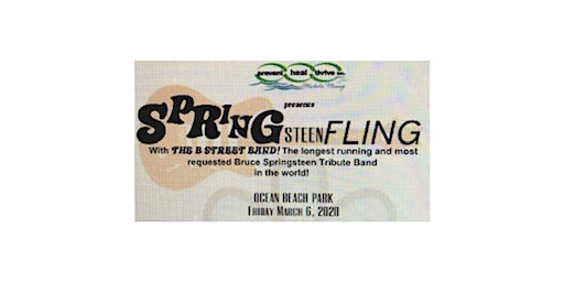 SPRINGsteenFLING