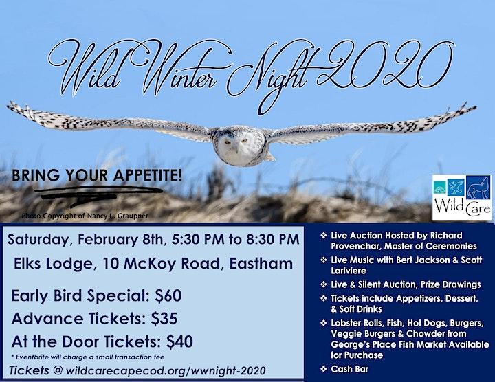 Wild Winter Night 2020 image