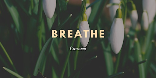 Breathwork Mindfulness Sunday Sessions for Women