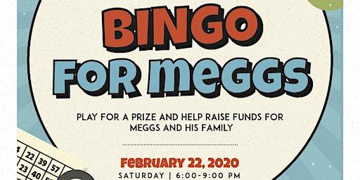 1st Annual                              Meggs Foundation Bingo Night