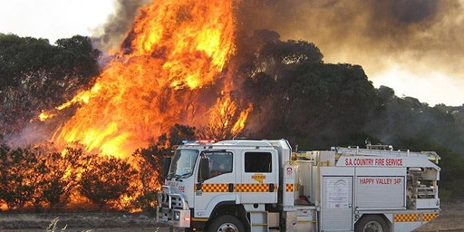 Bushfire Fundraiser for Firies, Families and Furry Friends