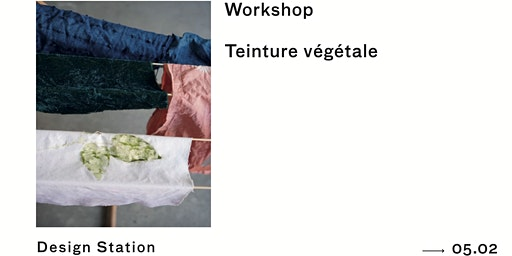 Workshop | Teinture végétale
