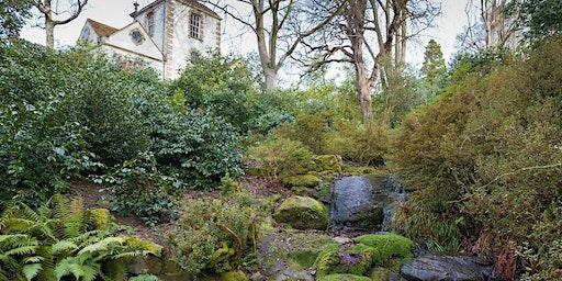 Birds of Bodnant Garden Walk