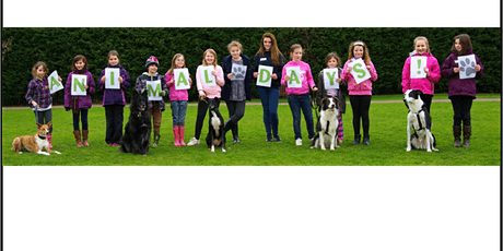 Cheltenham Animal Shelter Experience Day - Dog Session tickets