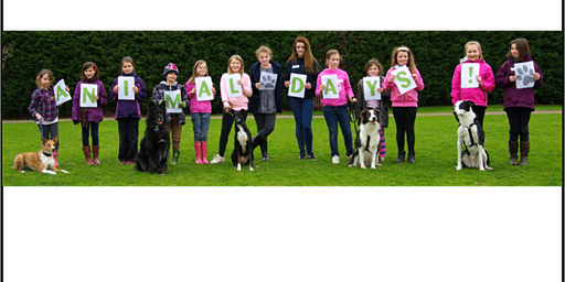 Cheltenham Animal Shelter Experience Day - Dog Session