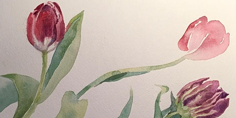 Tulips Plant study workshop in pencil and watercolour – with Jill Dow tickets