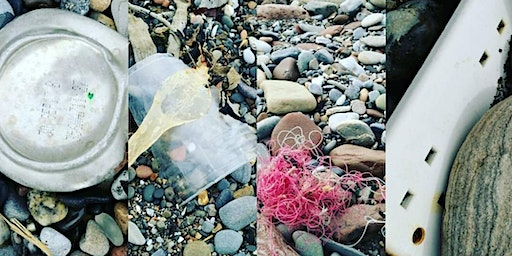 Beach Clean with Colourful Coast Partnership