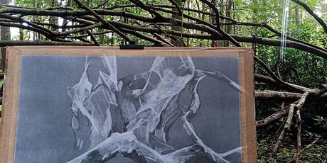 Diane Main: Drawing from Nature tickets