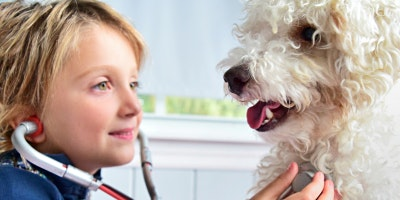 EHS Day Camp: Vets For Pets