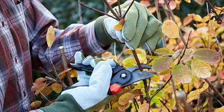 Pruning and Equipment Workshop tickets
