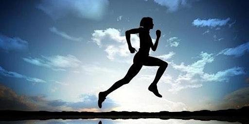 Trail Running For Beginners - Leighton Moss