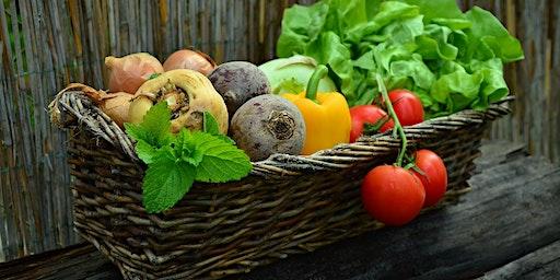 Grow Your Best Vegetable Garden