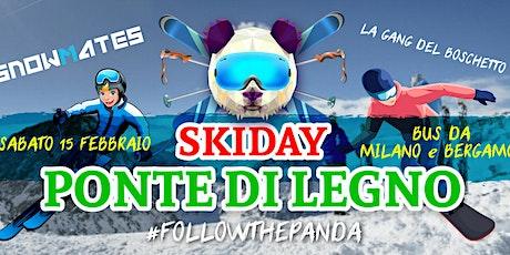 Skiday a PONTE DI LEGNO •skibus da Milano e Bergamo biglietti