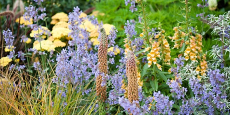 Planting Design 1- Introduction to Planting Design tickets