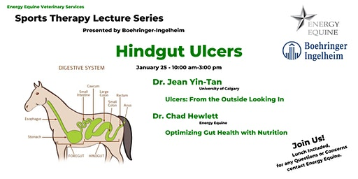 Sports Therapy Lecture Series: Hindgut Ulcers