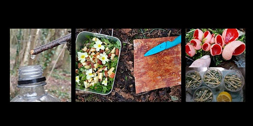 Spring Wild Food Forage Course