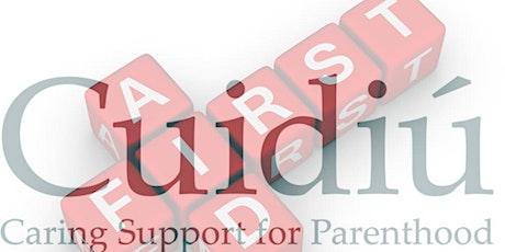 Cuidiú Paediatric First Aid Class (Greystones) tickets