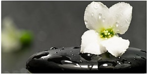 Mindfulness Practice Intensive - Mar 12 2020