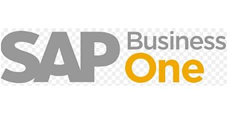 Capacitacion SAP Business One