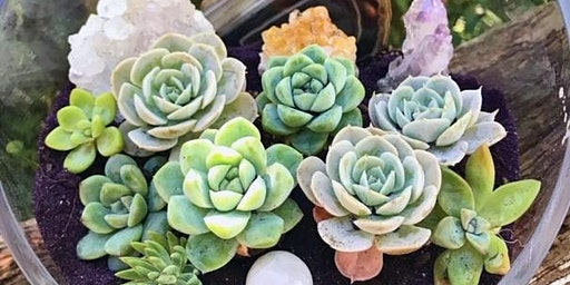 Succulent and Crystal Terrarium Workshop