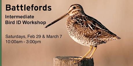 Battlefords - Intermediate Bird ID Workshop tickets