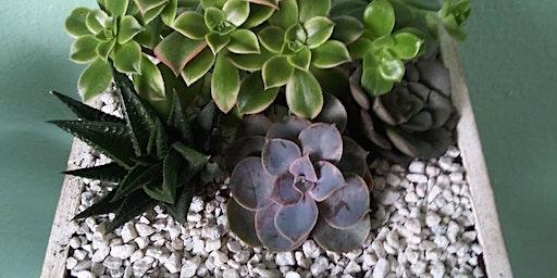 Tacoma Dome Home and Garden Show Succulent planter