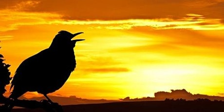 Dawn Chorus Walk of Stoke Park tickets